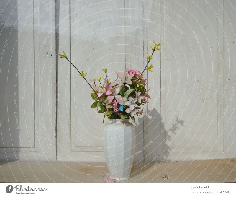 Sky Old Beautiful White Flower Forest Style Wood Line Lifestyle Idyll Elegant Decoration Glass Stand Esthetic