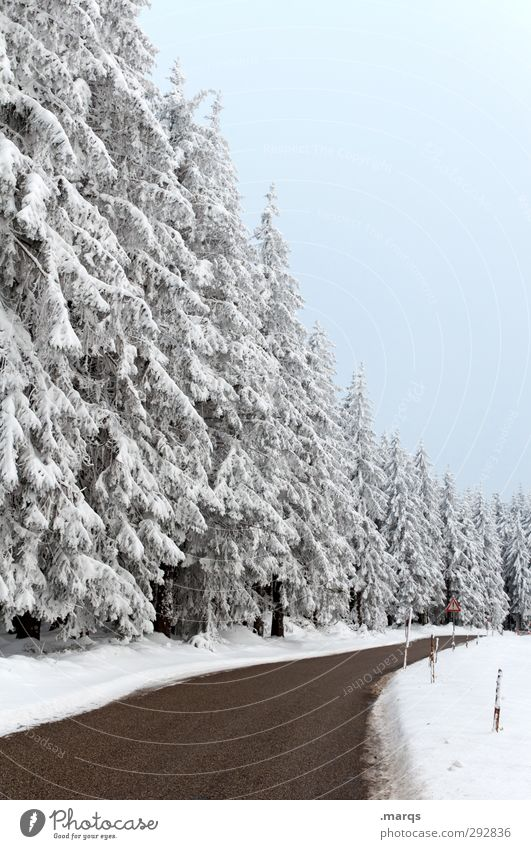 highway Trip Winter vacation Environment Nature Landscape Sky Ice Frost Snow Tree Forest Traffic infrastructure Street Lanes & trails Country road Simple Cold