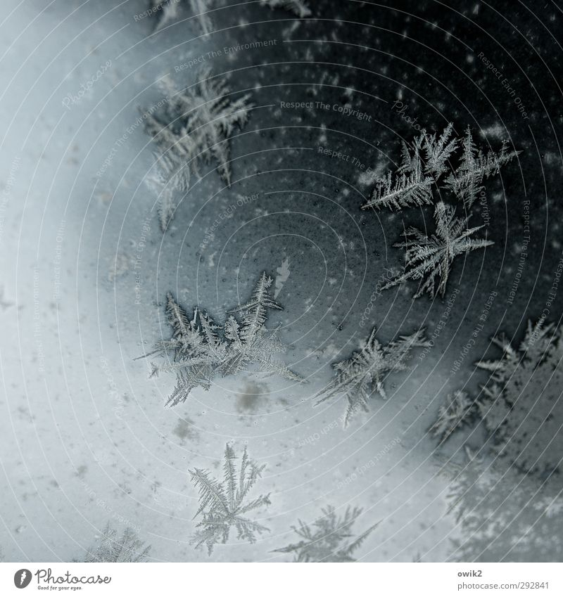 Winter Cold Small Car Window Natural Ice Glass Authentic Arrangement Idyll Cute Change Frost Point Transience Many
