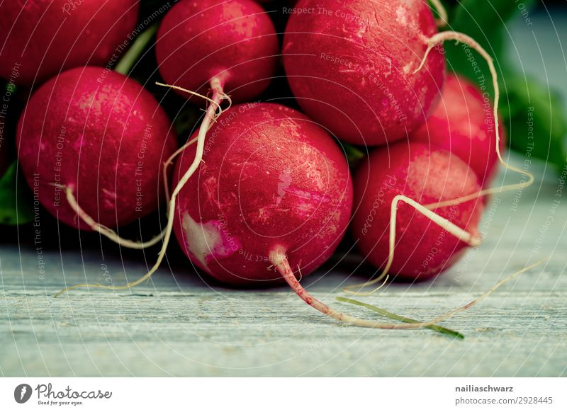 fresh radish Food Vegetable Radish Nutrition Organic produce Vegetarian diet Lifestyle Healthy Healthy Eating Fresh Delicious Natural Juicy Beautiful Gray