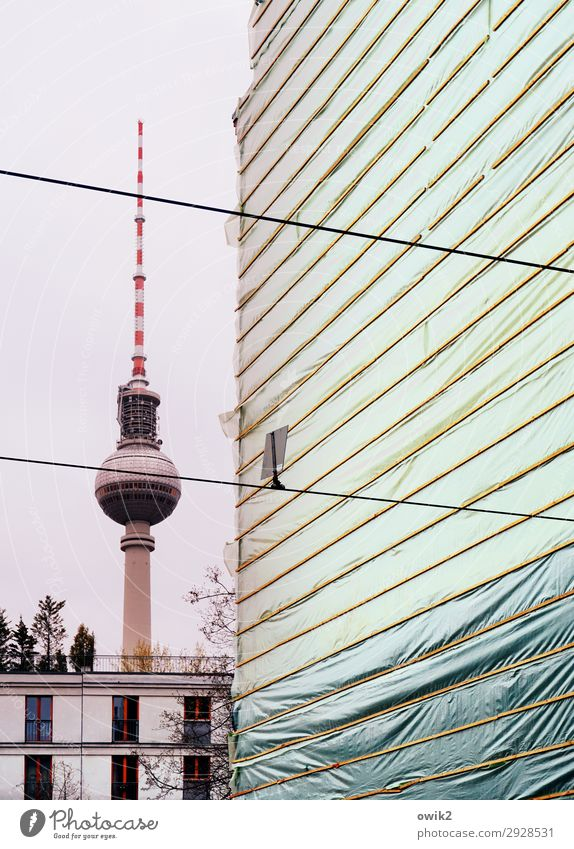 Berlin Air Air Air Sky Tree Downtown Berlin Berlin TV Tower Capital city Skyline Populated House (Residential Structure) Manmade structures Building