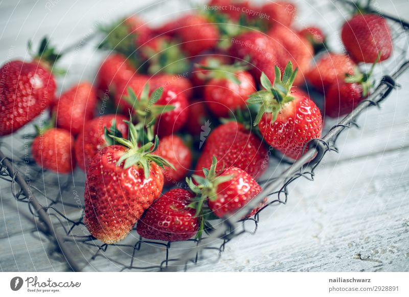 Fresh strawberries Food Fruit Strawberry Nutrition Organic produce Vegetarian diet Diet Bowl Basket Wire basket Lifestyle Shopping Healthy Healthy Eating Summer