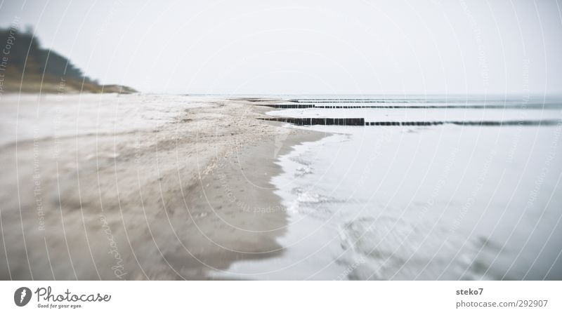 winter beach Winter Waves Coast Beach Baltic Sea Ocean Gloomy Gray Loneliness Calm Break water Zingst Subdued colour Exterior shot Deserted Copy Space right