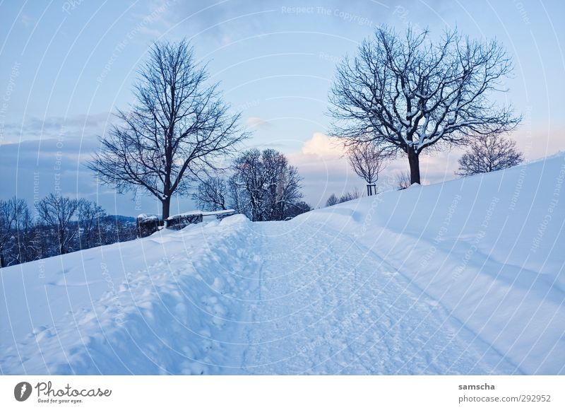 Sky Nature White Landscape Winter Environment Cold Snow Natural Ice Weather Climate Hiking Trip To go for a walk Frost
