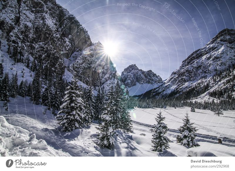 Sky Blue Vacation & Travel White Tree Landscape Clouds Winter Black Forest Mountain Snow Rock Ice Hiking Beautiful weather