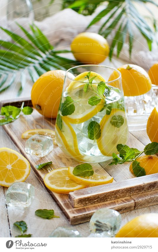 Homemade refreshing lemonade Fruit Beverage Lemonade Juice Summer Leaf Fresh Natural Yellow Green White Mint orange citrus glass Palma de Majorca Tropical