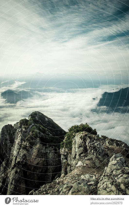 Sky Nature Summer Plant Animal Landscape Clouds Environment Far-off places Mountain Autumn Horizon Rock Bushes Elements Alps