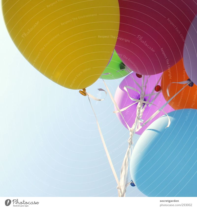 HOT LOVE | balloon bouquet Joy Party Event Feasts & Celebrations Carnival Fairs & Carnivals Wedding Birthday Cloudless sky Balloon Bright Multicoloured Happy