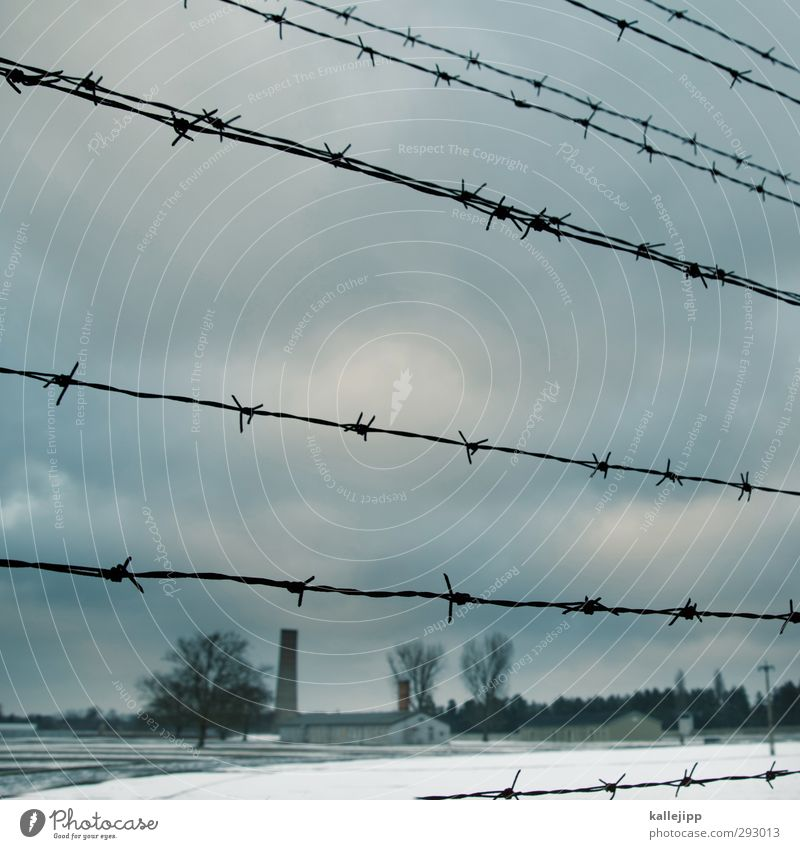 Sachsenhausen Education Gloomy Barbed wire Concentration camp Oranienburg Holocaust memorial Destruction Nazi regime Politics and state Federal eagle