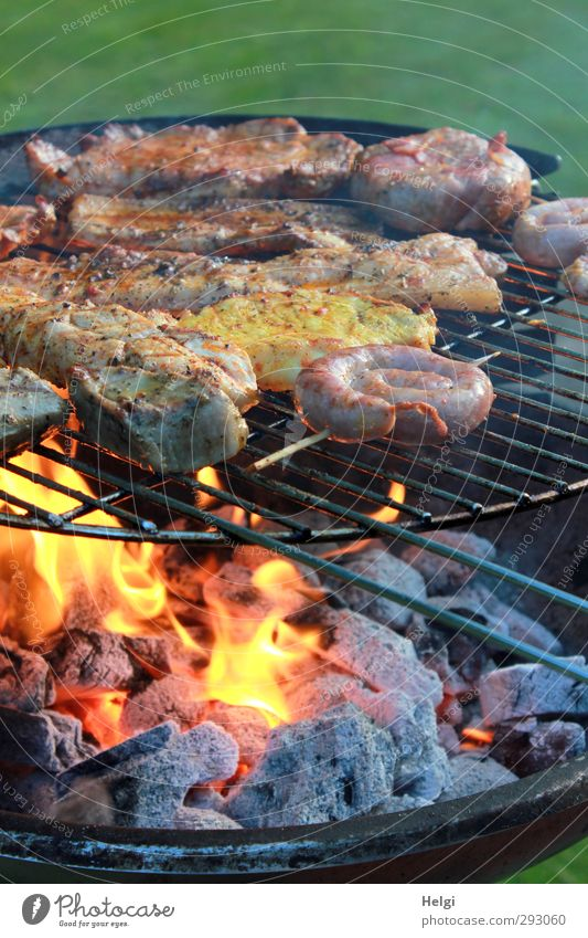 Meat and sausage on a grill with charcoal and flame Food Sausage Nutrition Dinner BBQ Steak Grill Charcoal (cooking) BBQ season Barbecue (apparatus) Fire Flame