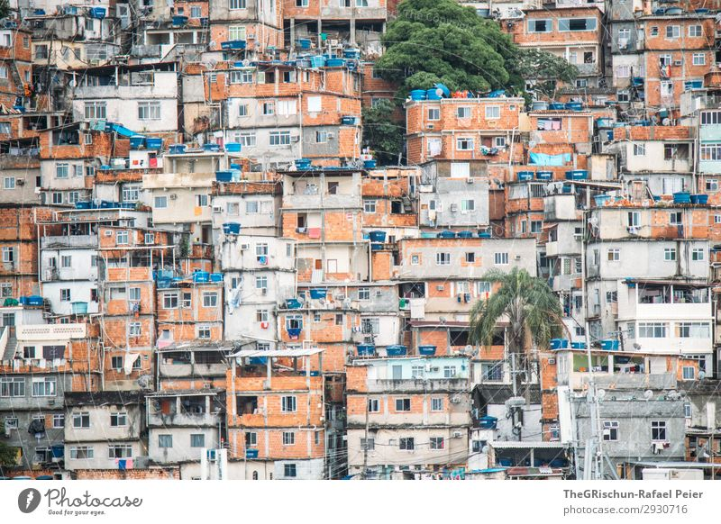favelas Town Blue Brown Green Black Silver White House (Residential Structure) Manmade structures Poverty Window Living or residing Palm tree Brazil