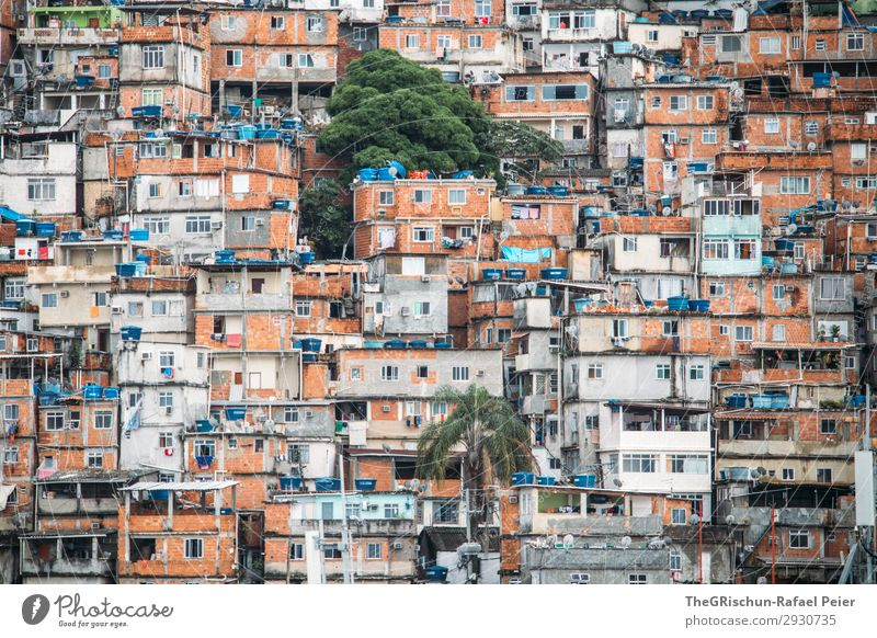 favela Town Blue Brown Orange Black White Rio de Janeiro Brazil House (Residential Structure) Poverty Window Intoxicant War Palm tree Door Colour photo Deserted