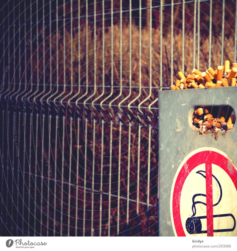 Healthy Authentic Signage Smoking Fence Passion Testing & Control Exclusion Bans Addiction Disgust Aggravation Trash container Warning sign Ashtray