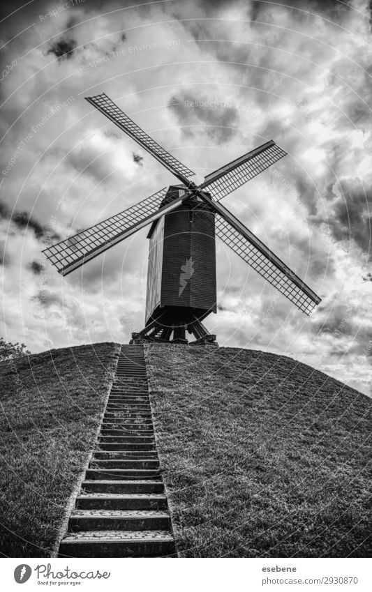 Old mill in Bruges Beautiful Vacation & Travel Tourism Summer House (Residential Structure) Nature Landscape Sky Wind Grass Hill Building Architecture Wood