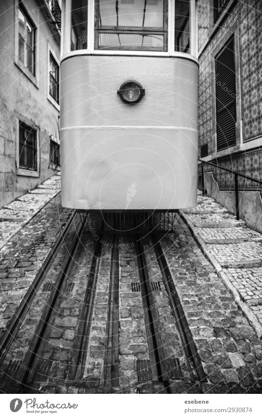 Typical Lisbon tram Vacation & Travel Tourism Summer 18 - 30 years Youth (Young adults) Adults Downtown Building Architecture Transport Street Vehicle Car