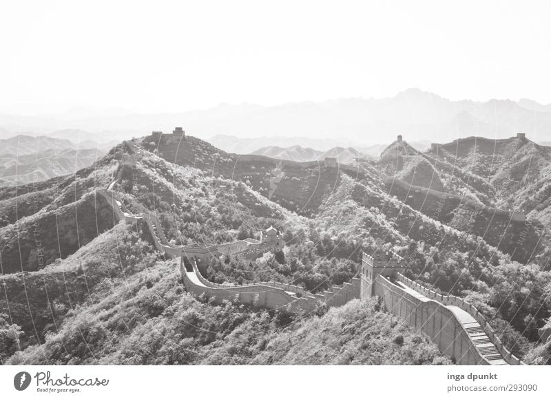 The Wall - demarcation Environment Nature Landscape Plant China Asia Wall (barrier) Wall (building) Great wall Manmade structures Long Border Border area