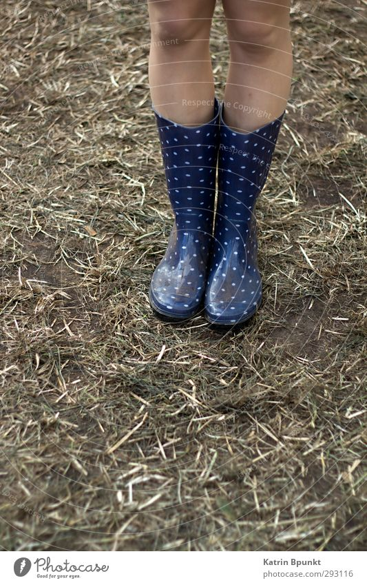 gumboots #3 Human being Legs 1 Music festival Bad weather Meadow Rubber boots Stand Colour photo Exterior shot