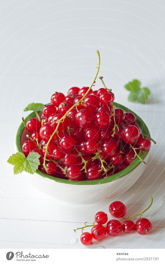 Red currants in white-green skin Fruit Redcurrant Organic produce Vegetarian diet Diet Finger food Bowl Healthy Eating To enjoy Fresh Delicious Round Juicy Sour