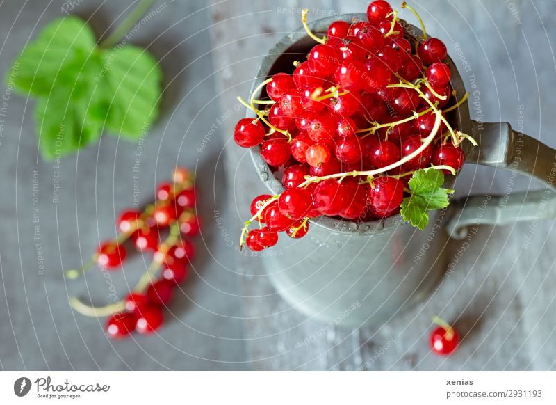 Fresh currants in a cup Fruit Redcurrant Nutrition Organic produce Vegetarian diet Diet Mug Delicious Sour Sweet Green zinc cup Water jug Food photograph