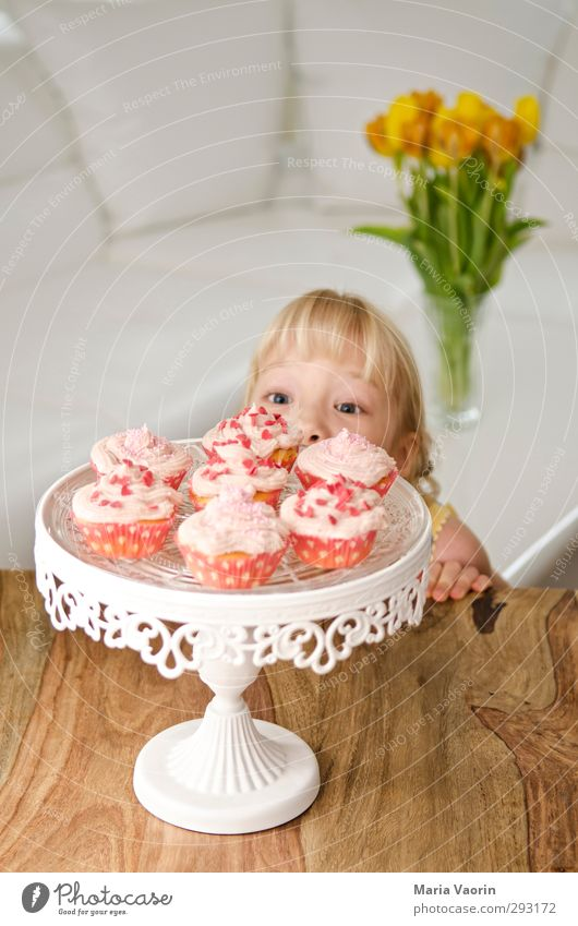 Human being Child Girl Feminine Eating Feasts & Celebrations Infancy Blonde Flat (apartment) Birthday Living or residing Table Cute Sweet Observe Curiosity
