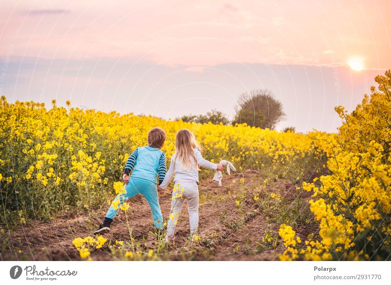 Kids walking towards the sunset Child Sky Nature Summer Beautiful Landscape Hand Sun Flower Street Lifestyle Yellow Blossom Meadow Boy (child) Freedom