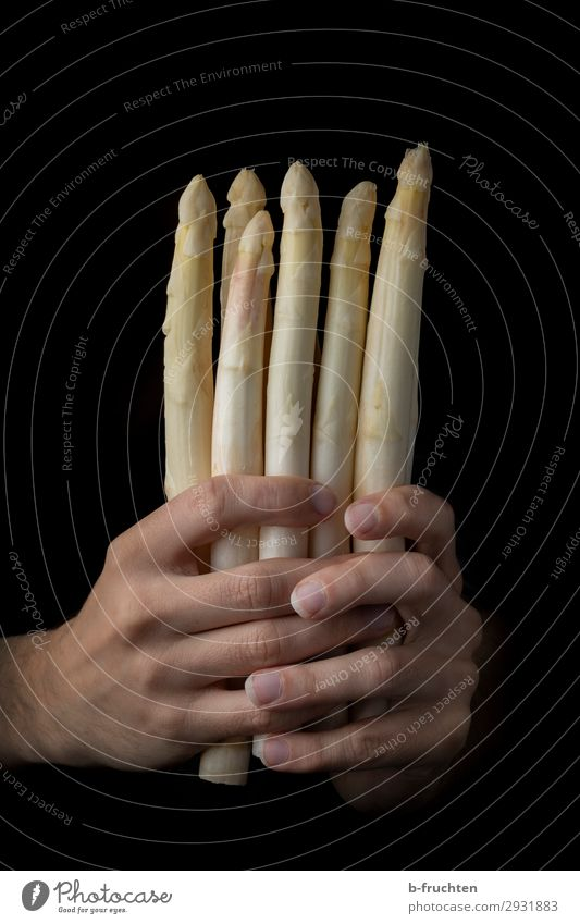 White asparagus Food Vegetable Nutrition Organic produce Vegetarian diet Healthy Eating Gastronomy Man Adults Hand Fingers Work and employment Select To hold on