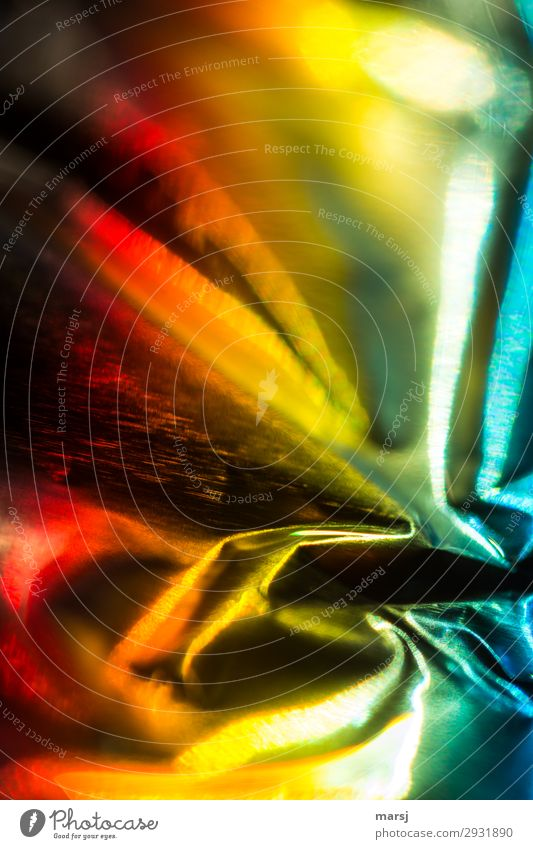 main thing colorful Play of colours Spectral Wrinkles Highlight Glittering Exceptional Fantastic Fresh Uniqueness Multicoloured Yellow Gold Red Power Folds
