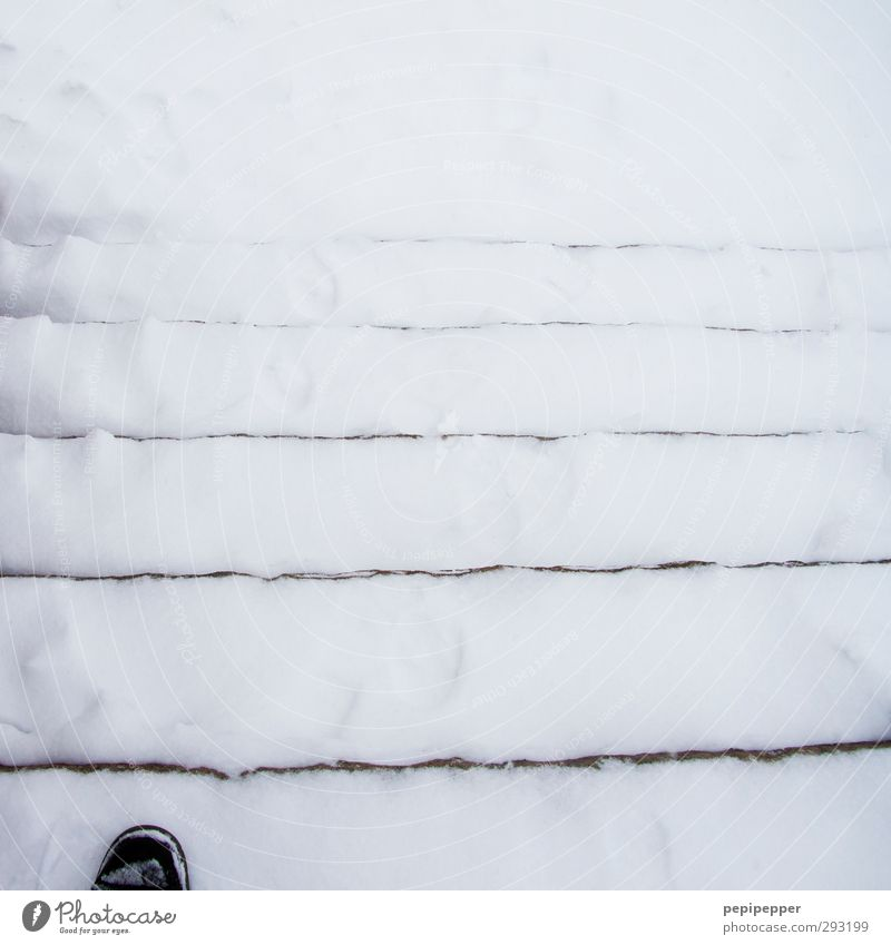 foot-steppe-snow Masculine Feet 1 Human being Winter Ice Frost Snow Stairs Pedestrian Footwear Stripe Going Black & white photo Exterior shot Day