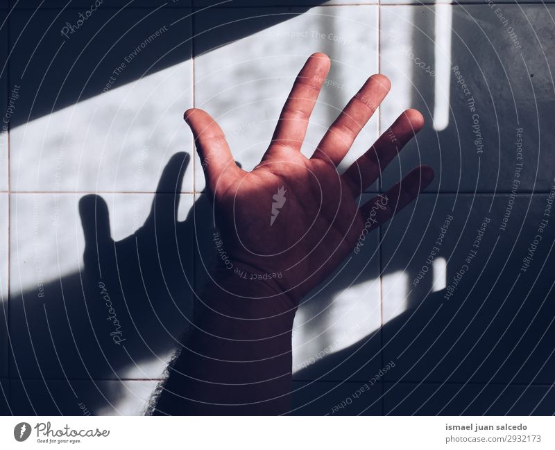 hand shadow silhouette on the wall Human being Hand Body Fingers Minimalistic Palm of the hand