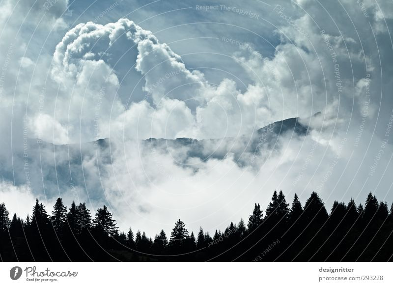 Sky Blue Clouds Forest Mountain Weather Climate Large Europe Beautiful weather Threat Alps Peak Switzerland Treetop Respect