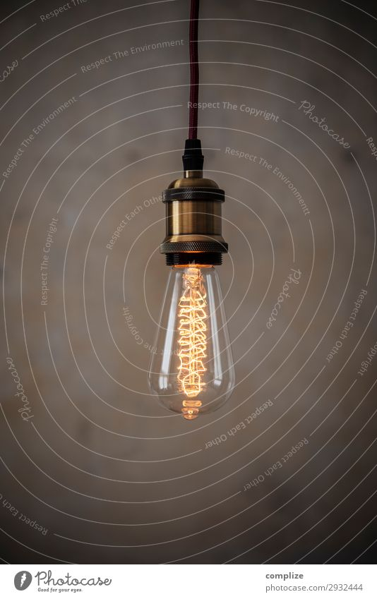 Vintage Edison Light Bulb Lifestyle Living or residing Flat (apartment) Redecorate Moving (to change residence) Arrange Interior design Decoration Lamp Room