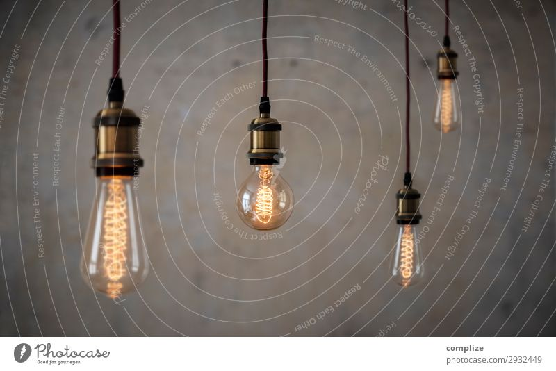 Vintage Edison incandescent lamps in front of patina concrete wall Lifestyle Style Design Living or residing Flat (apartment) Redecorate