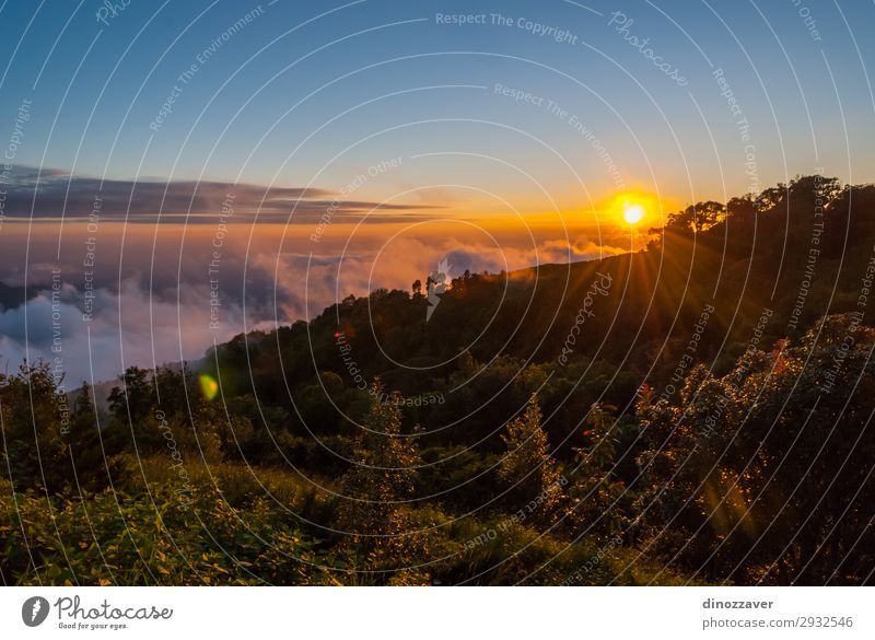 Doi inthanon mountains, Thailand Beautiful Vacation & Travel Tourism Freedom Summer Mountain Hiking Skiing Environment Nature Sky Clouds Tree Park Forest Hill