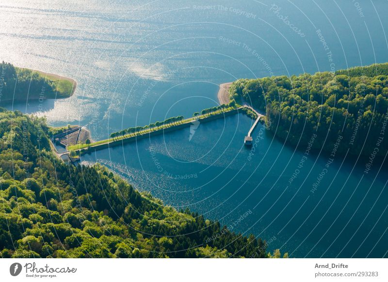 line in the landscape Nature Landscape Tree Forest Lakeside Green Perspective Avenue Dam Retaining wall Reservoir Colour photo Multicoloured Exterior shot