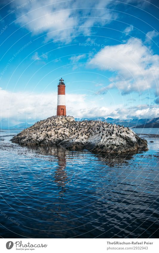 Faro Les Éclaireurs Environment Nature Clouds Esthetic Lighthouse Island Maritime disaster Rescue Warn Help Real estate Rock Reflection tierra del fuego