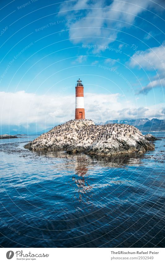 Faro Les Éclaireurs Nature Blue Red White Lighthouse Maritime disaster Rescue Real estate Rock Ocean tierra del fuego ushuaia Wind Gale Clouds Cold Rough