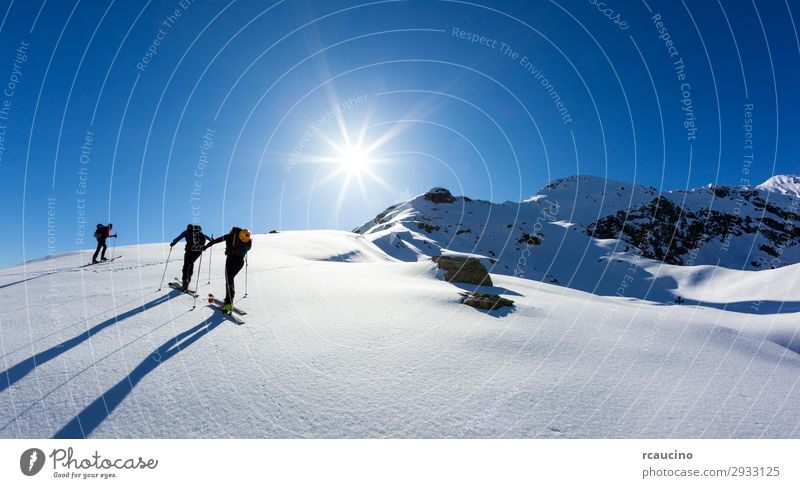 A group of skialpers on italian Alps Vacation & Travel Adventure Freedom Expedition Sun Winter Snow Mountain Hiking Sports Climbing Mountaineering Human being