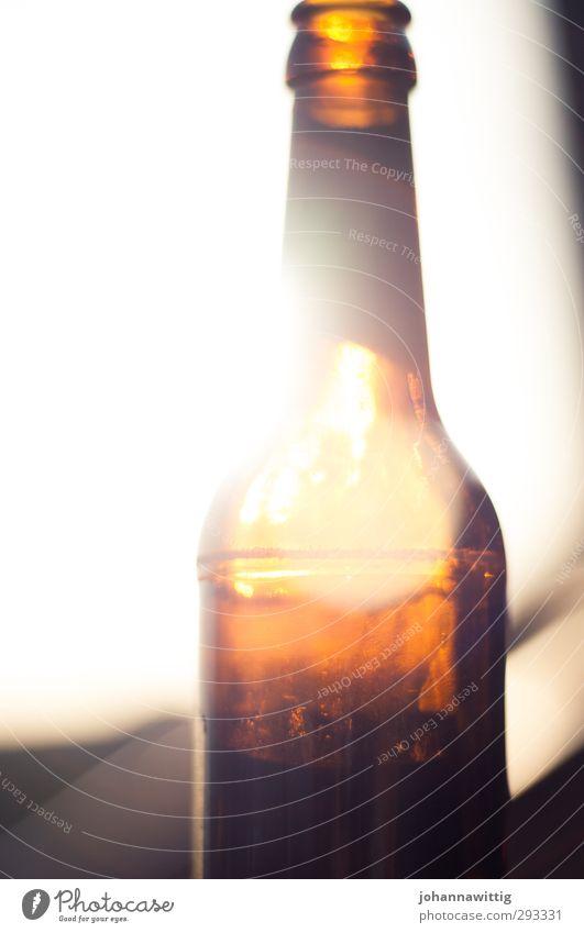 because the light breaks so easily. Beer Bottle Lifestyle Joy Happy Feasts & Celebrations Drinking Joie de vivre (Vitality) Debauchery Relaxation Experience