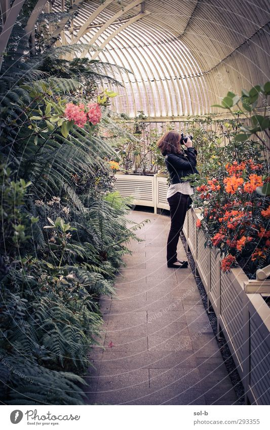 Jayne Tourism Garden Human being Feminine Young woman Youth (Young adults) 1 18 - 30 years Adults Nature Plant Flower Observe Looking Green Esthetic