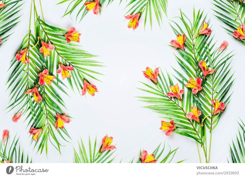 Green tropical palm leaves and exotic flowers on white background, top view. Frame. Flat lay. Copy space for your design green frame flat lay copy space