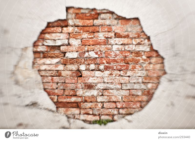 all in all Wall (barrier) Wall (building) Facade Old Town Decline Brick wall Brick-built house Rendered facade Plaster Hollow Colour photo Exterior shot