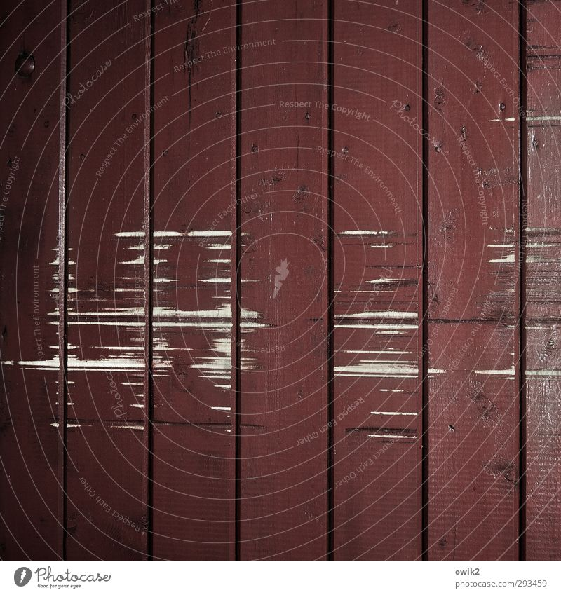 pusher goods boards Door Wood Dark Abrasion Old Ravages of time Red grinding marks Crack & Rip & Tear Parallel Colour photo Subdued colour Interior shot