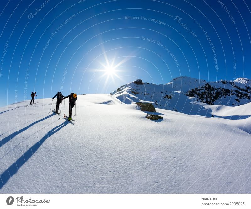 A group of skialpers Vacation & Travel Adventure Freedom Expedition Sun Winter Snow Mountain Hiking Sports Climbing Mountaineering Human being Man Adults Group