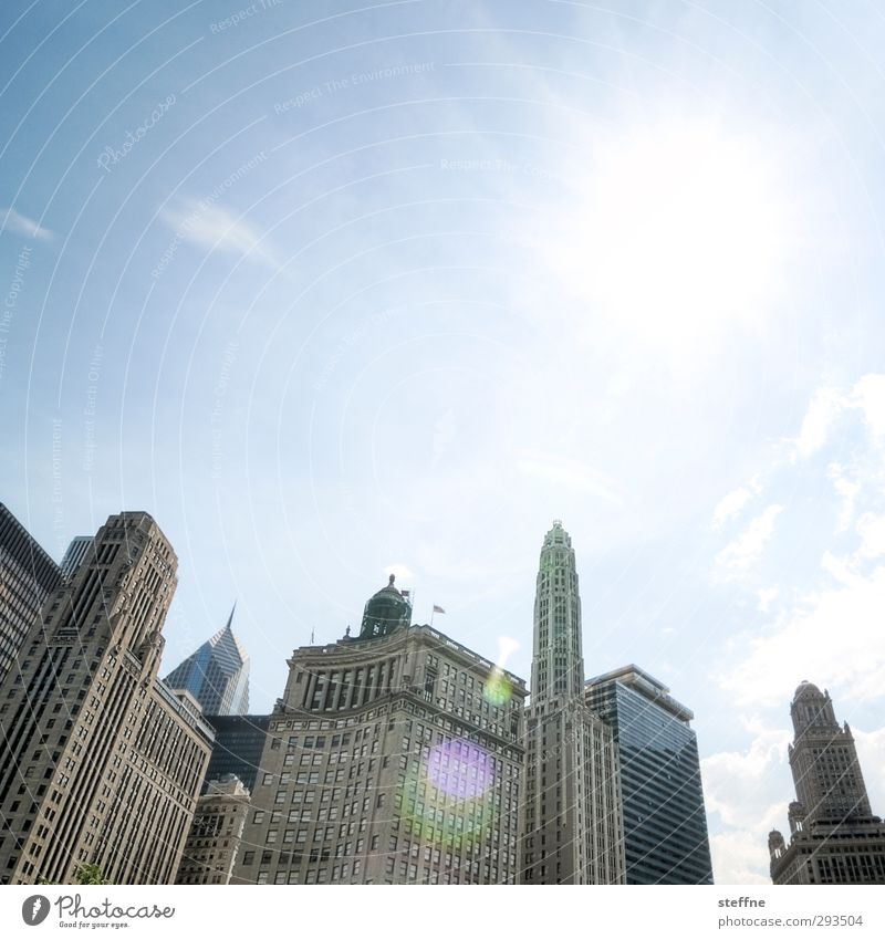 Gotham City by day Cloudless sky Sunlight Beautiful weather Chicago USA Town Downtown Skyline Overpopulated High-rise Esthetic batman dark knight Back-light