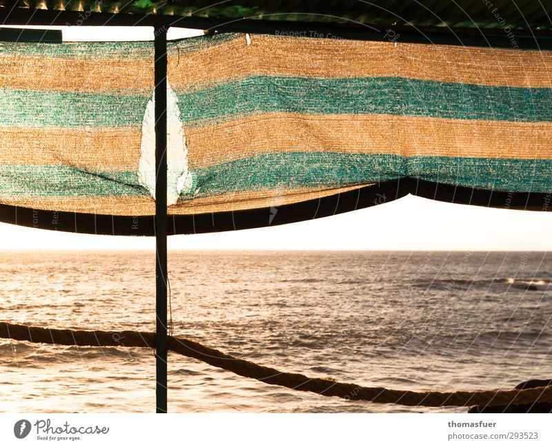M+M Vacation & Travel Far-off places Freedom Summer Summer vacation Sun Beach Ocean Island Waves Cloudless sky Horizon Beautiful weather Terrace Sun blind Rope