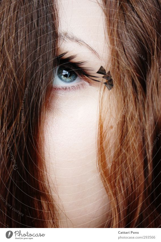 . Feminine Young woman Youth (Young adults) Eyes Brunette Long-haired Observe Looking Esthetic Simple Beautiful Near Soft Blue Gray Green Iris Eyelash Feather