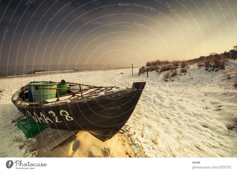 hibernation Relaxation Calm Vacation & Travel Freedom Environment Elements Sand Water Sky Horizon Winter Snow Coast Beach Baltic Sea Ocean Harbour Boating trip