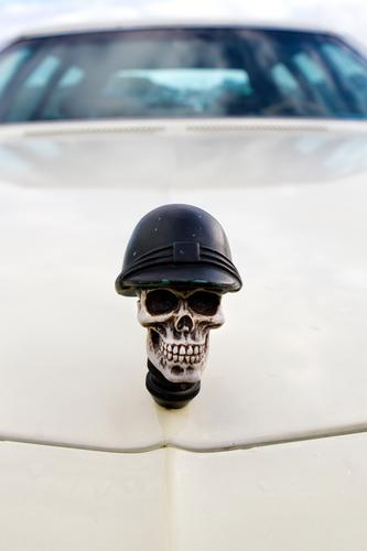 Death Car Speed Threat Symbols and metaphors Risk Haste Mobility Politics and state Aggression Climate change Accident Environmental pollution Road traffic