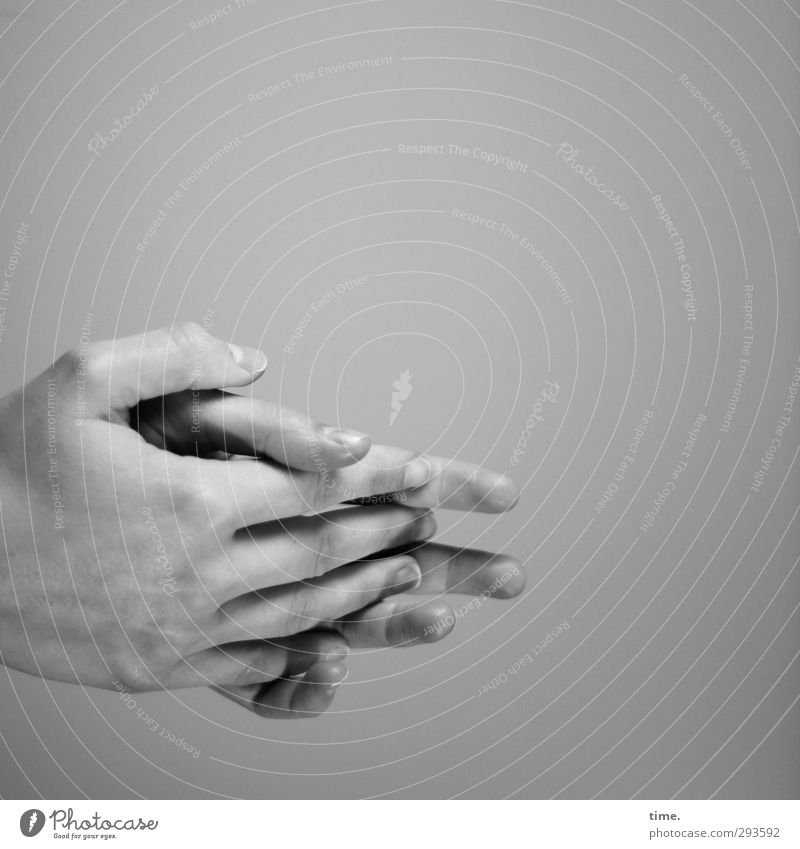 love the one you're with Human being Hand Fingers 1 Wall (barrier) Wall (building) Touch Emotions Moody Safety Peaceful Goodness Caution Self Control Flexible