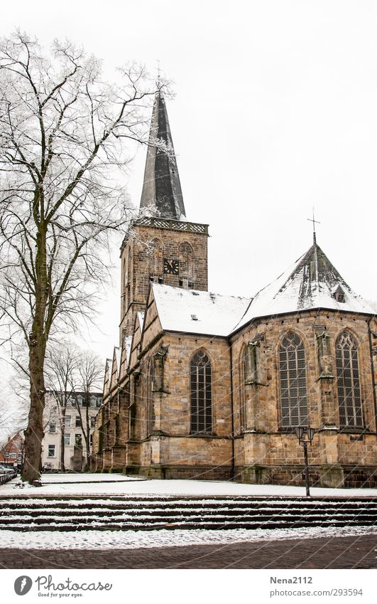 Sunday excursion destination Village Church Architecture Cold Church spire Tree Stairs White Winter Colour photo Exterior shot Deserted Copy Space top